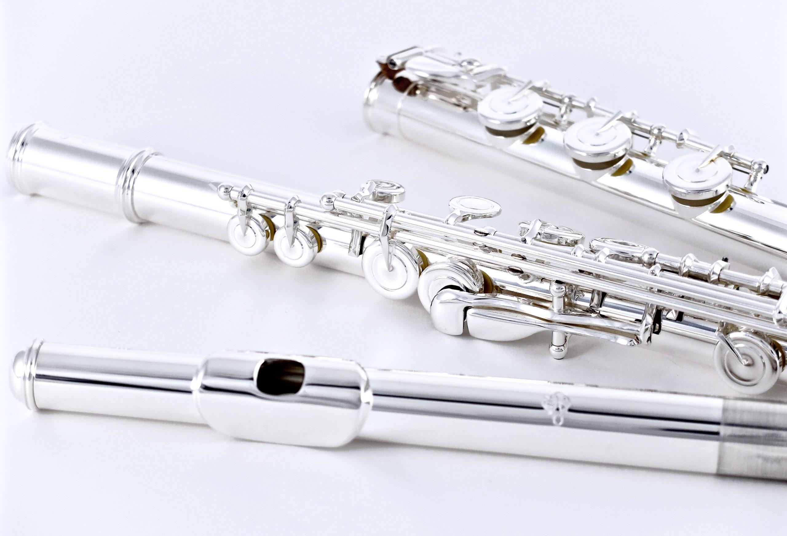 Флейта ученическая Di Zhao DZ 401BGF