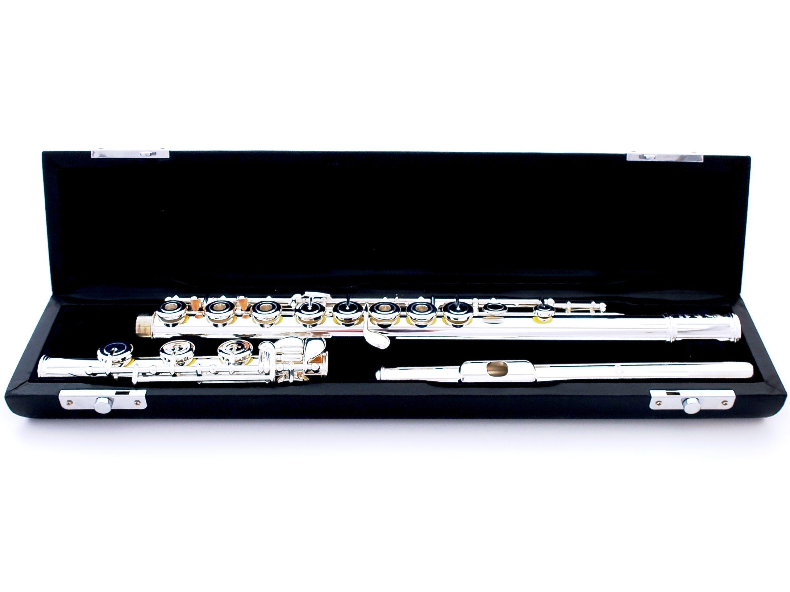 Купить флейту студенческую Di Zhao DZ 501BGF