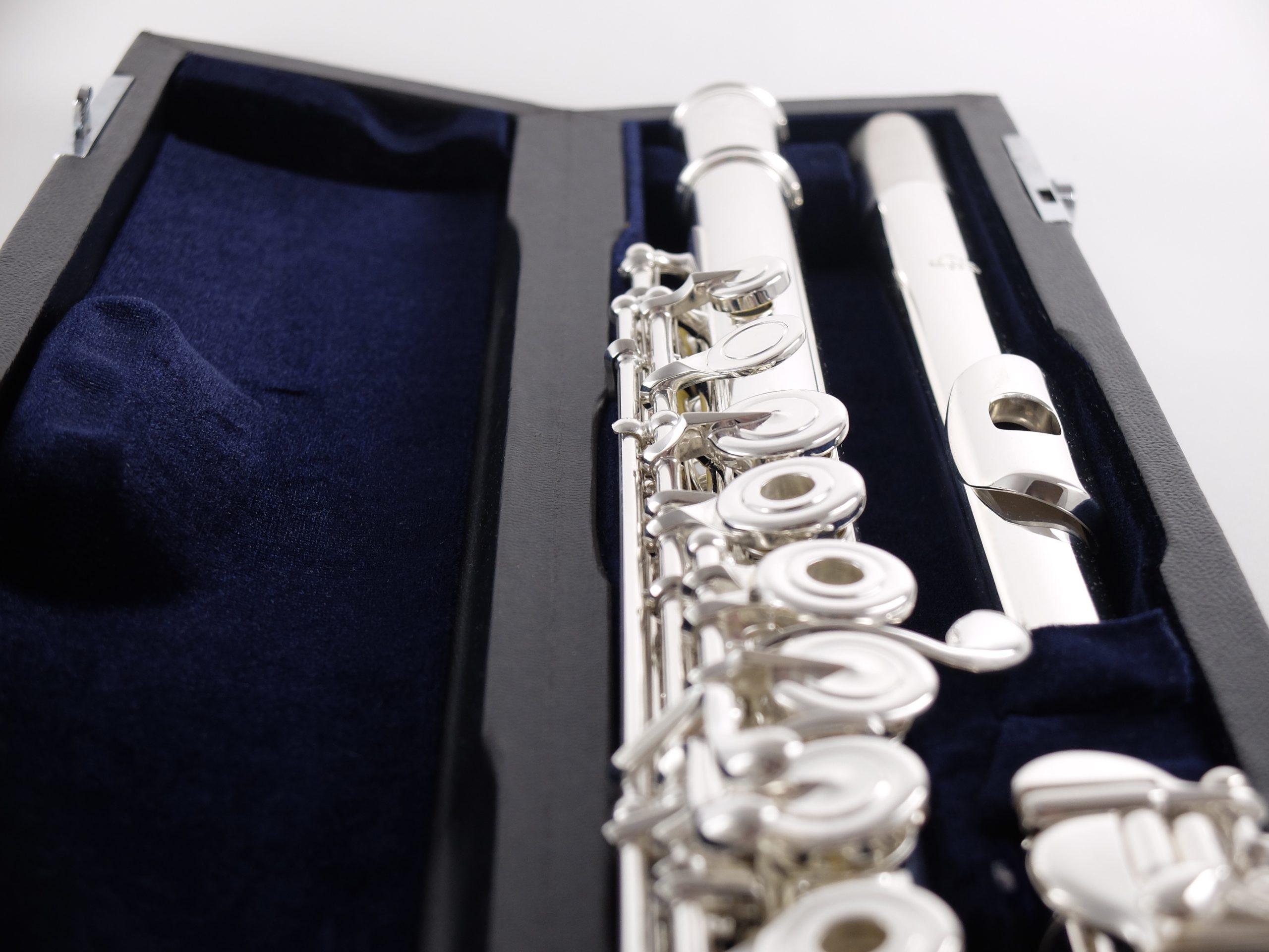 Флейта профессиональная Di Zhao DZ 801BEF