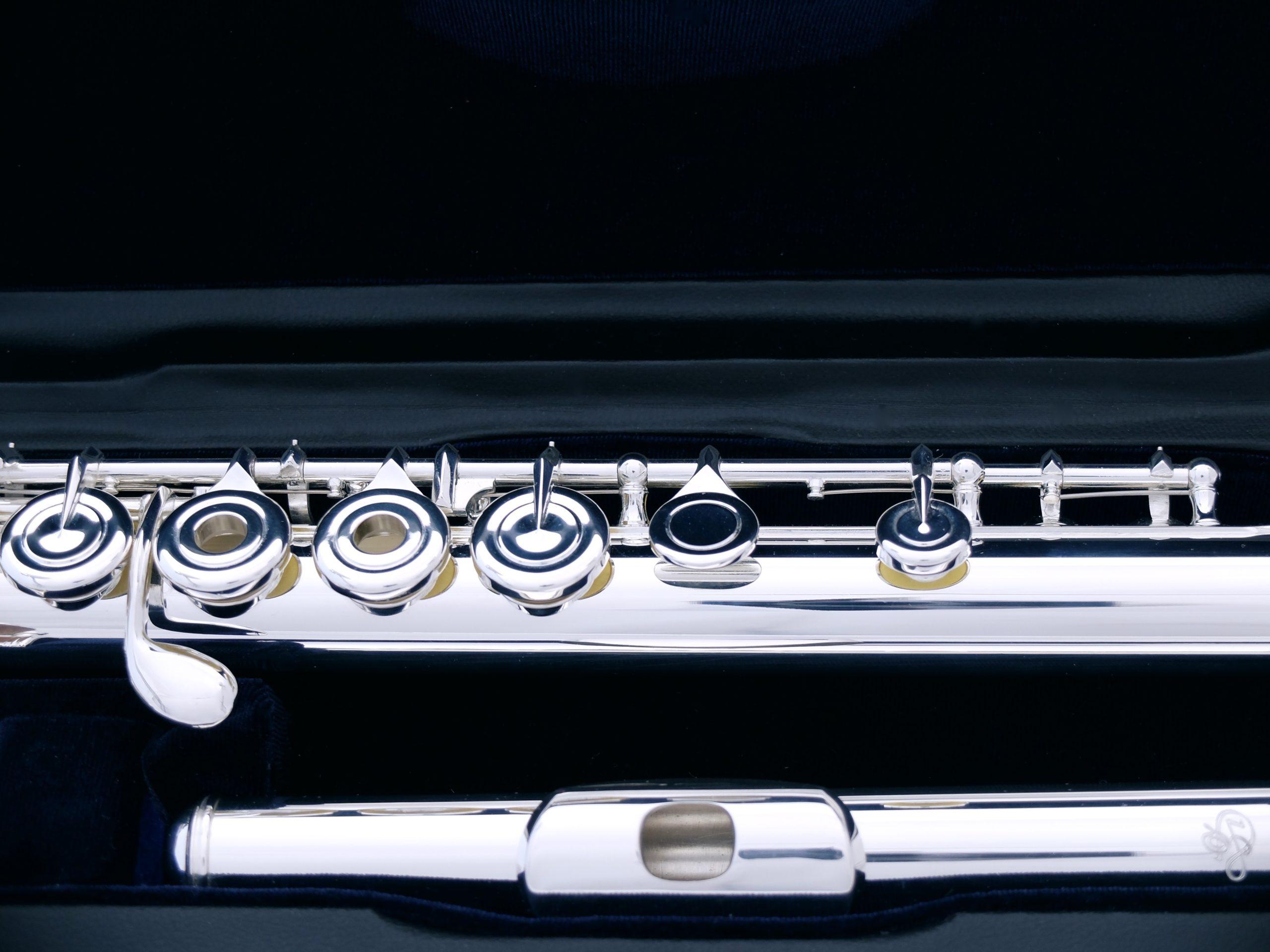 Флейта профессиональная Di Zhao DZ 801BGF