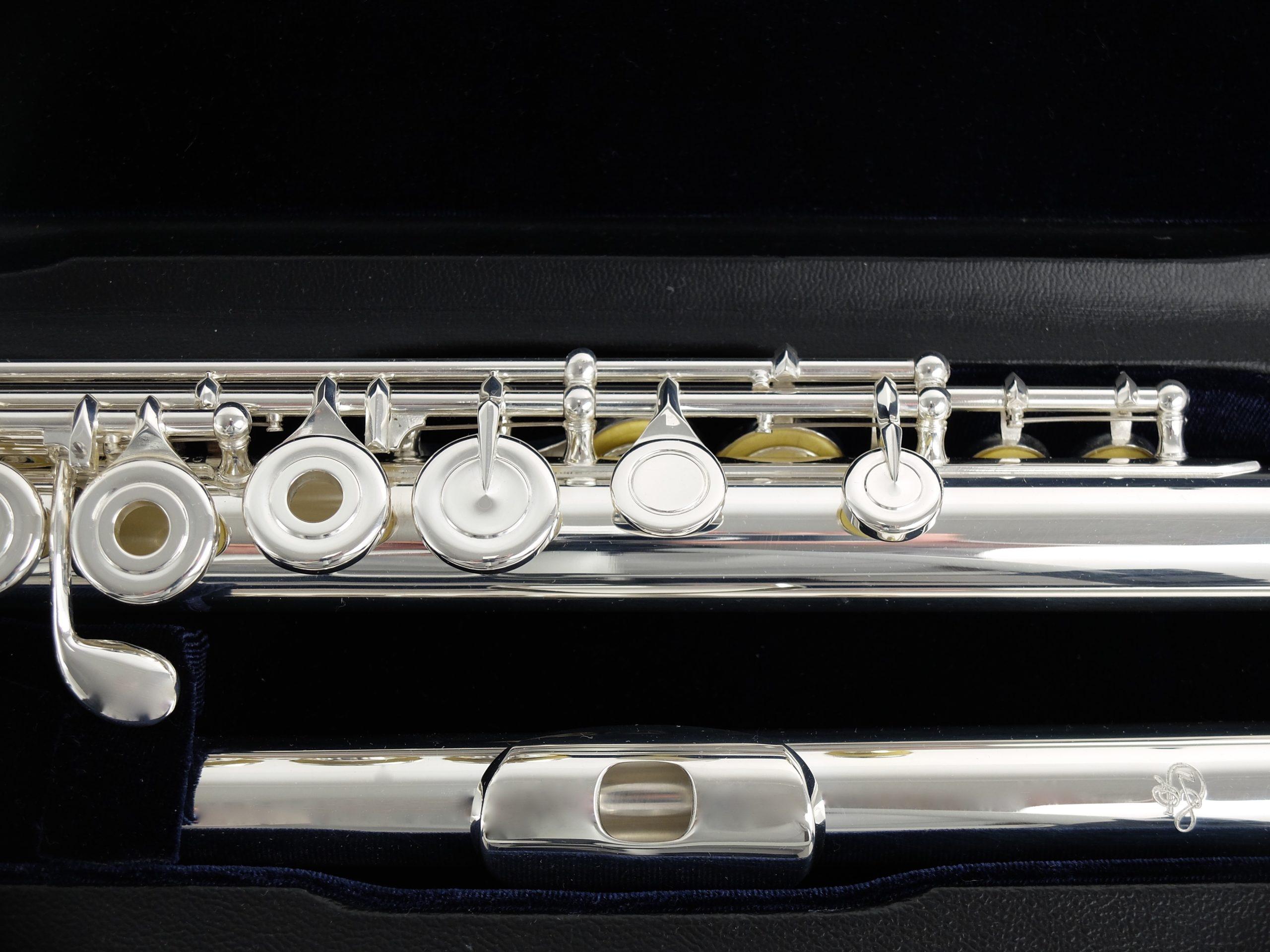 Флейта профессиональная Di Zhao DZ 801CEF